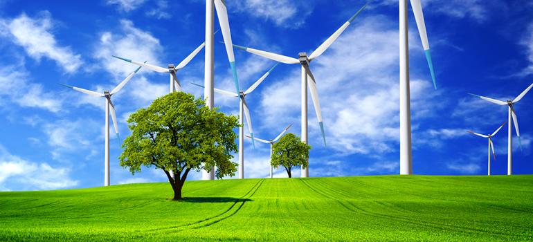 bn-environmental-awareness